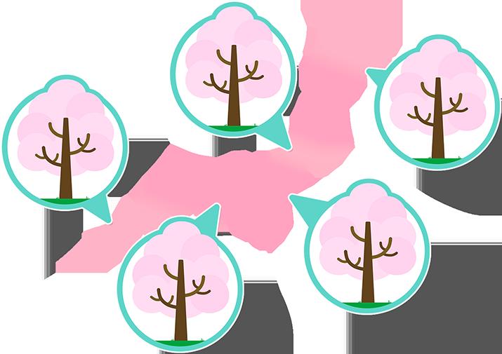 みんなのHAPPYで育てたマイネ王の木が本物に!