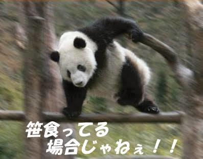 images_(4).jpeg