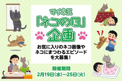 (2/25まで)【ネコの日企画】コメント投稿でパケットプレゼント!