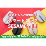 sesame-title.png