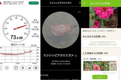 散歩がより楽しくなる!? 写真から生き物や植物の名前がわかる判定アプリを試してみた