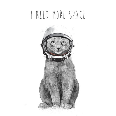 I_need_more_space11666_square.jpg