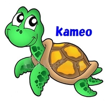 kameo46の子供たち