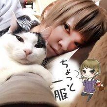 猫ミ,,・∀・,ミさん