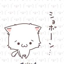 真夜中の電子猫